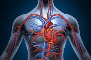 Какие симптомы указывают на то, что у вас плохое кровообращение