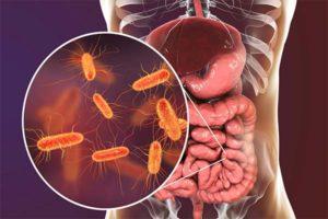 Опасные и вредные продукты при дисбактериозе